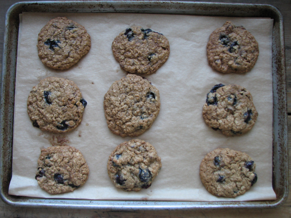 Blueberry Cobbler Cookies on Pan