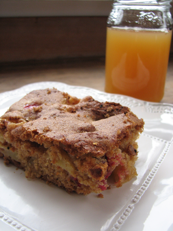 Apple Cranberry Bars