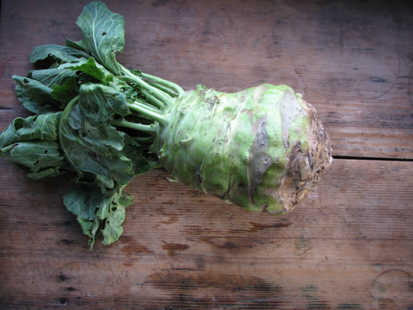Kohlrabi