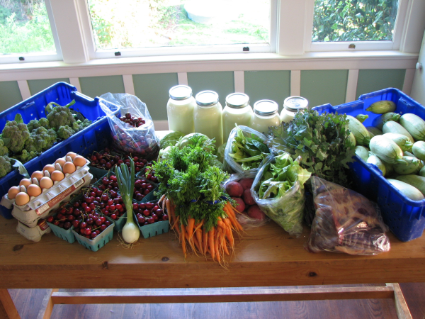 Full Diet CSA Bounty Week 26
